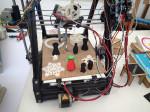 3D-gedruckter Rotaugenlaubfrosch